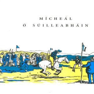 Micheal O Suilleabhain 歌手頭像