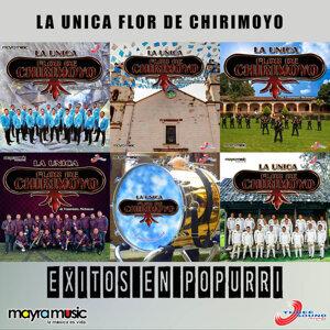 Banda Flor de Chirimoyo 歌手頭像