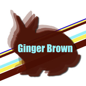 GingerBrown 歌手頭像