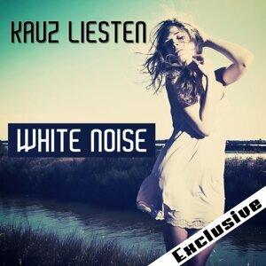 Kauz Liesten 歌手頭像