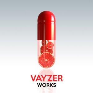 Vayzer 歌手頭像