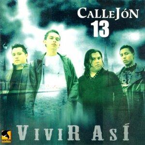 Callejón 13 歌手頭像