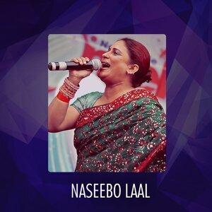 Naseebo Laal 歌手頭像