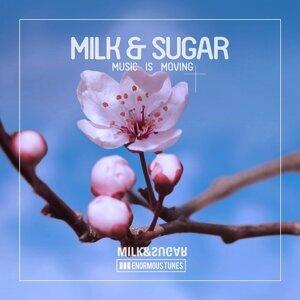 Milk & Sugar 歌手頭像