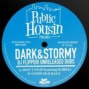 Dark & Stormy 歌手頭像