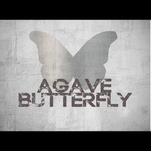 Agave Butterfly 歌手頭像