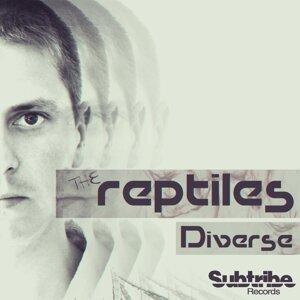 The Reptiles 歌手頭像