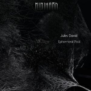 Jules David