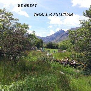 Donal O Sullivan 歌手頭像