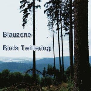 Blauzone 歌手頭像