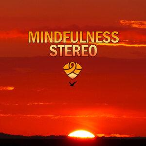 Mindfulness 歌手頭像