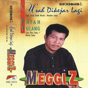 Meggi Z 歌手頭像