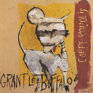 Grant Lee Buffalo (格蘭李布法羅合唱團)