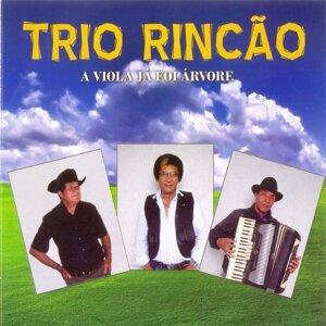 Trio Rincão 歌手頭像