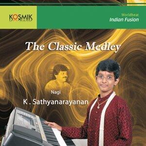 K. Sathyanarayanan 歌手頭像