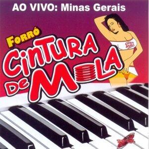 Forró Cintura de Mola 歌手頭像