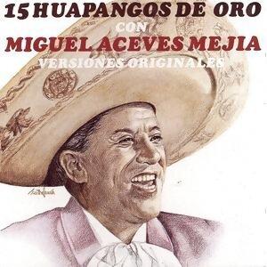 Manuel Aceves Mejia アーティスト写真