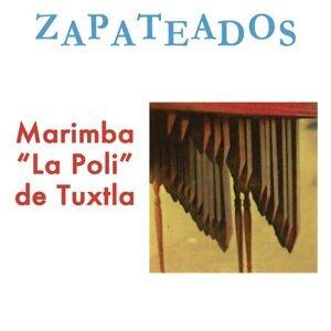 """Marimba """"La Poli"""" de Tuxtla アーティスト写真"""
