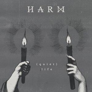 Harm 歌手頭像