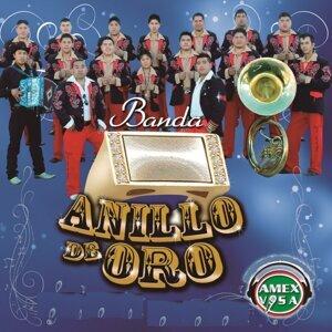 Banda Anillo De Oro 歌手頭像