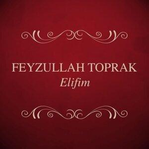 Feyzullah Toprak 歌手頭像
