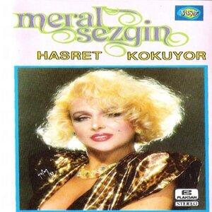 Meral Sezgin 歌手頭像