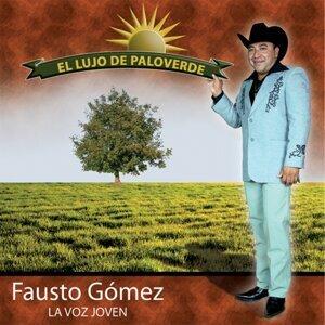Fausto Gomez 歌手頭像