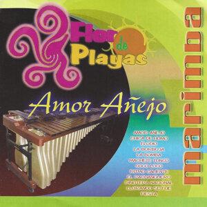 Marimba Flor De Playas 歌手頭像