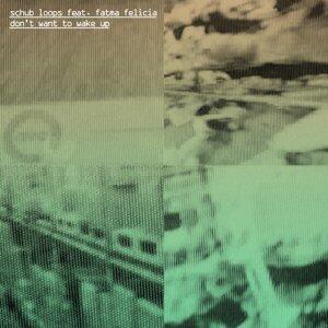 Schub Loops feat. Fatma Felicia 歌手頭像