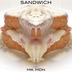 Mr.MDN 歌手頭像