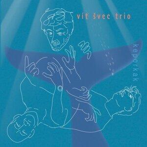 Vít Švec Trio 歌手頭像
