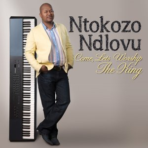 Ntokozo Ndlovu 歌手頭像