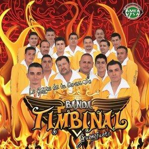 Banda Timbinal Guanajuato 歌手頭像
