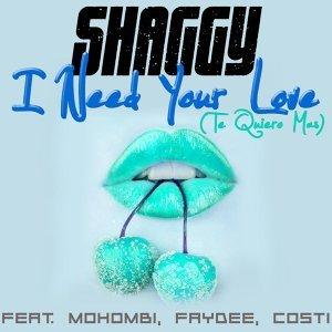 Shaggy feat. Mohombi, Faydee, Costi 歌手頭像