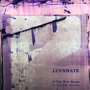 Luvnhate 歌手頭像