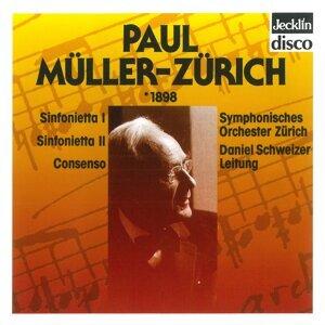 Daniel Schweizer, Symphonisches Orchester Zürich 歌手頭像
