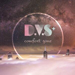 D.V.S* 歌手頭像