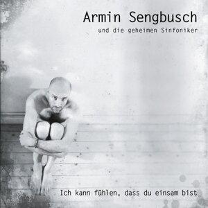 Armin Sengbusch und die geheimen Sinfoniker 歌手頭像