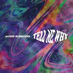 Audio Subscene 歌手頭像