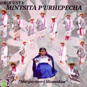 Orquesta Mintsita Purépecha 歌手頭像