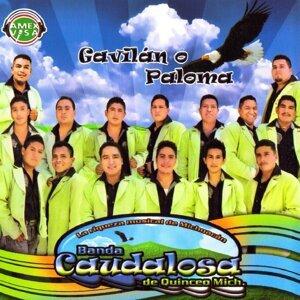 Banda Caudalosa De Quinceo 歌手頭像