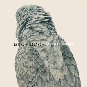 Bumpkin Island 歌手頭像