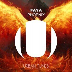 Faya 歌手頭像