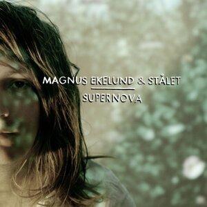 Magnus Ekelund & Stålet 歌手頭像