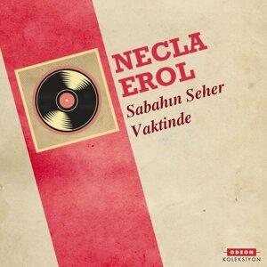 Necla Erol 歌手頭像