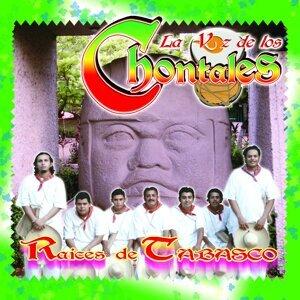 La Voz De Los Chontales 歌手頭像