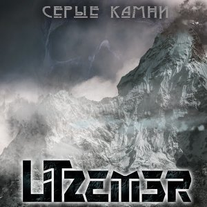 Litzemer 歌手頭像