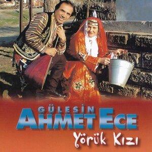 Gülesin, Ahmet Ece 歌手頭像