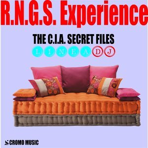 R.N.G.S. Experience 歌手頭像