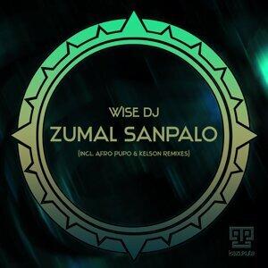Wise DJ 歌手頭像